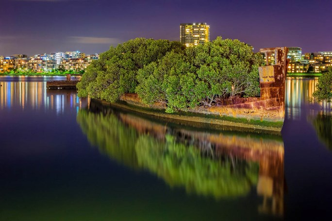 """SS Ayrfield """"The Floating Forest"""", Sydney"""