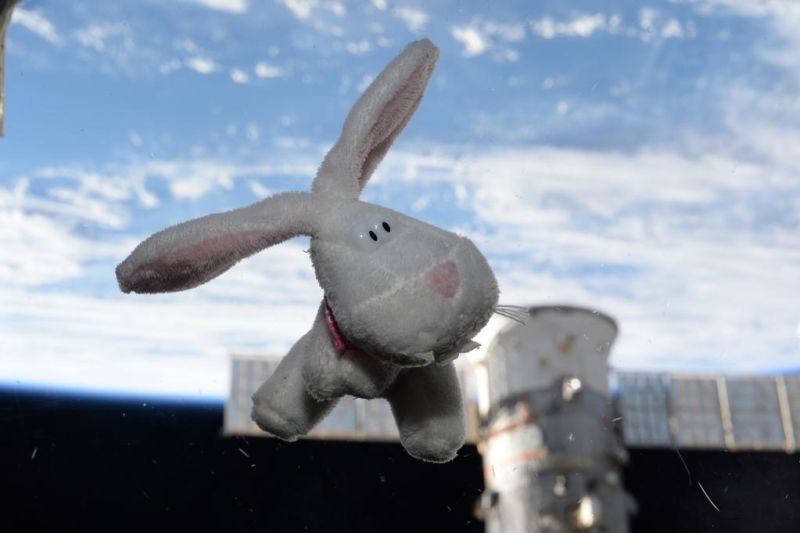 The Easter Bunny visits the space station