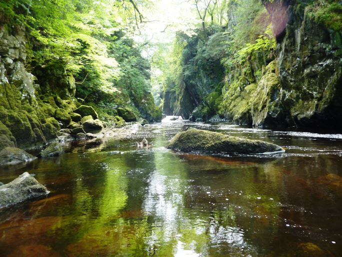 The Fairy Glen, Conwy