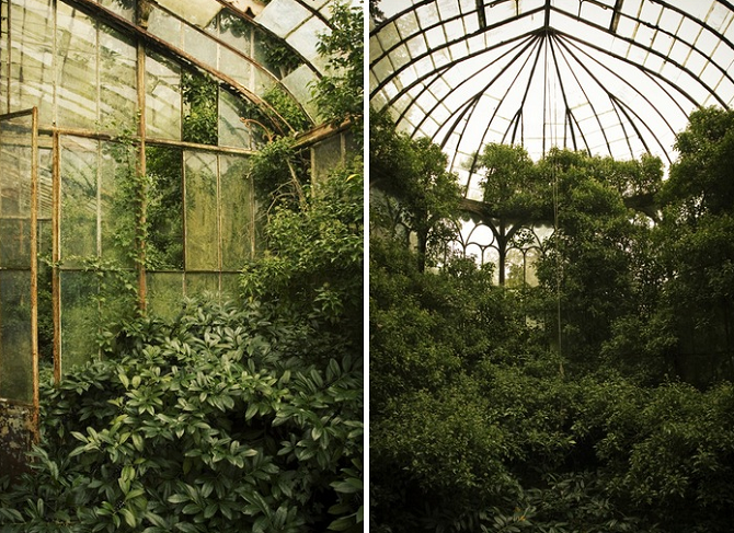 Mysterious Abandoned Greenhouses