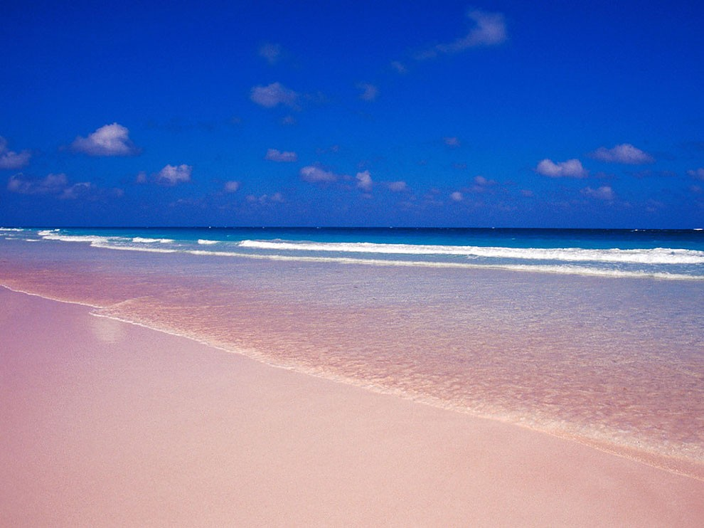 Pink Sands Beach Harbour Island Bahamas