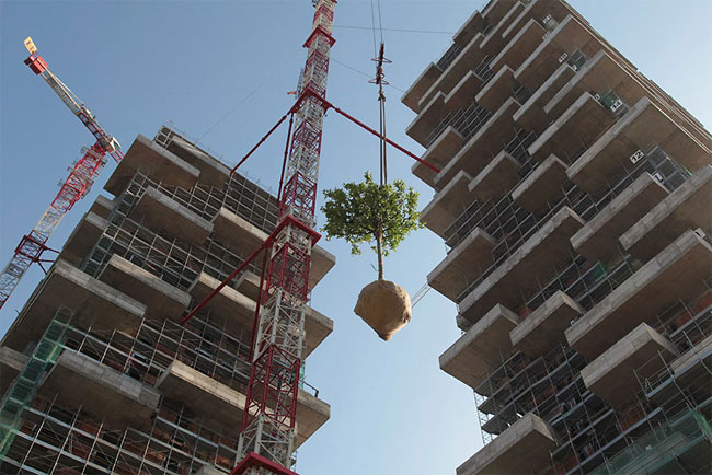 World's First Building Covered In Evergreen Trees
