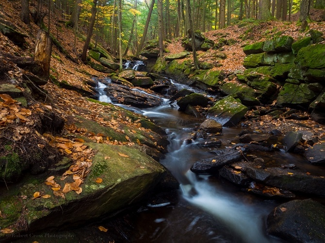 Chesterfield Gorge
