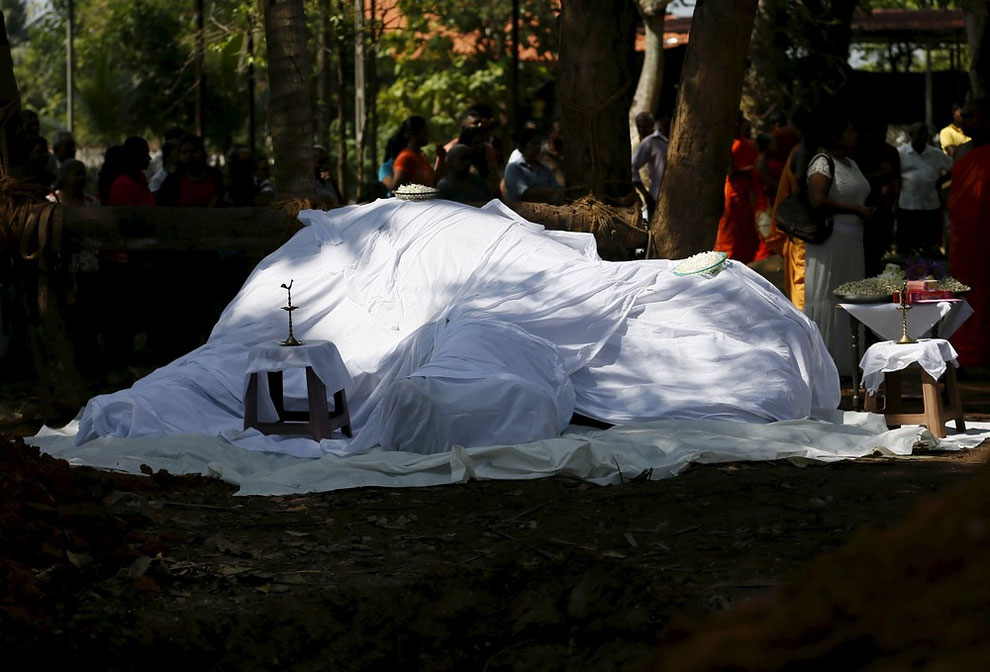 A covered dead body of elephant Hemantha is seen during a religious ceremony at a Buddhist temple in Colombo March 15, 2016.