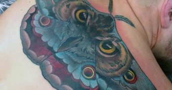 creative-moth-with-owl-eyes-mens-back-tattoos