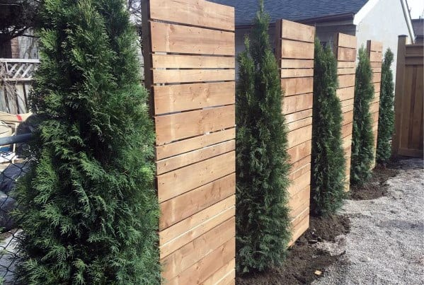 pine-tree-and-wood-panels-luxury-privacy-fence